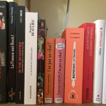 Une petite sélection d'ouvrages pour des idées cadeaux. ©MD