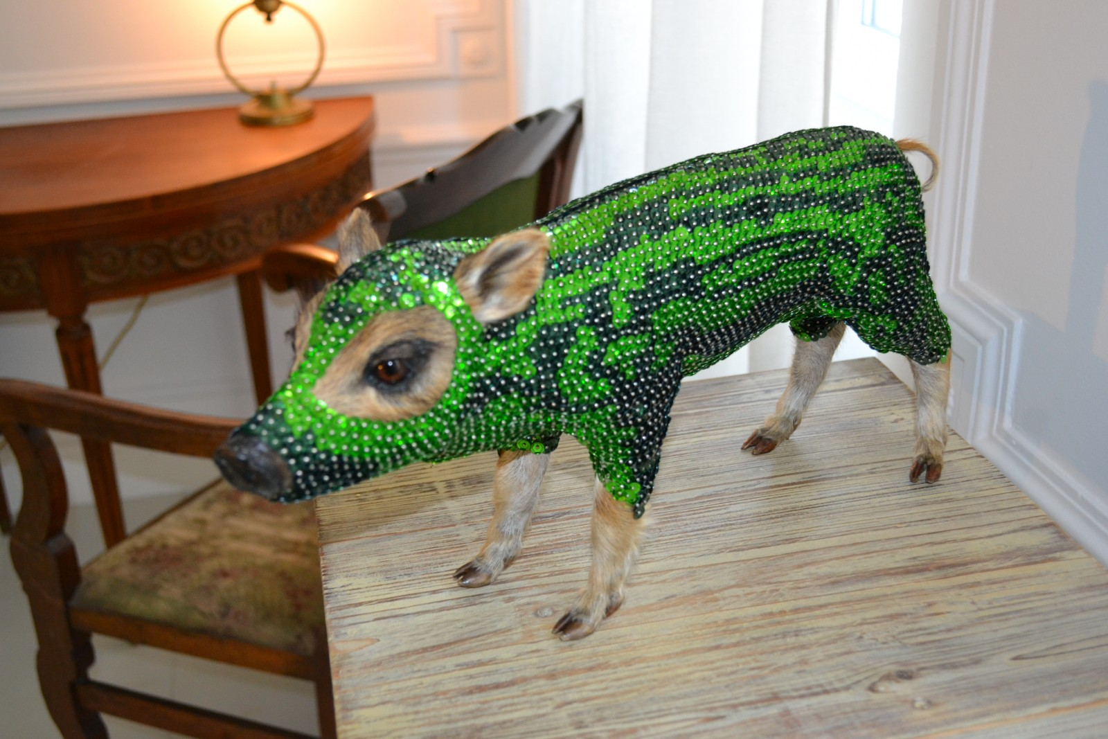 Un cochon empaillé par l'artiste Sandra Musy lors de l'exposition Créatures ©MD