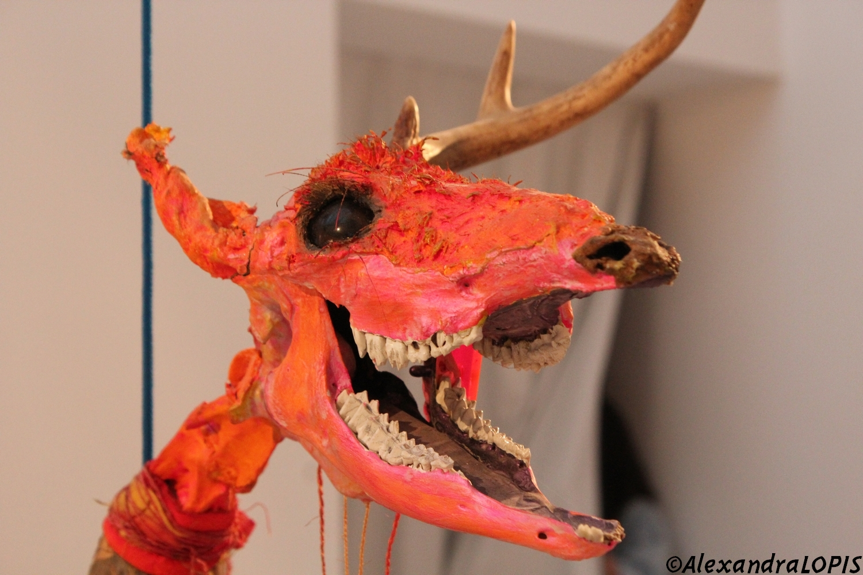 Jimmie Durham, A dead Deer, 1986, Courtesy collection M HKA Antwerp. Photo  ©AL